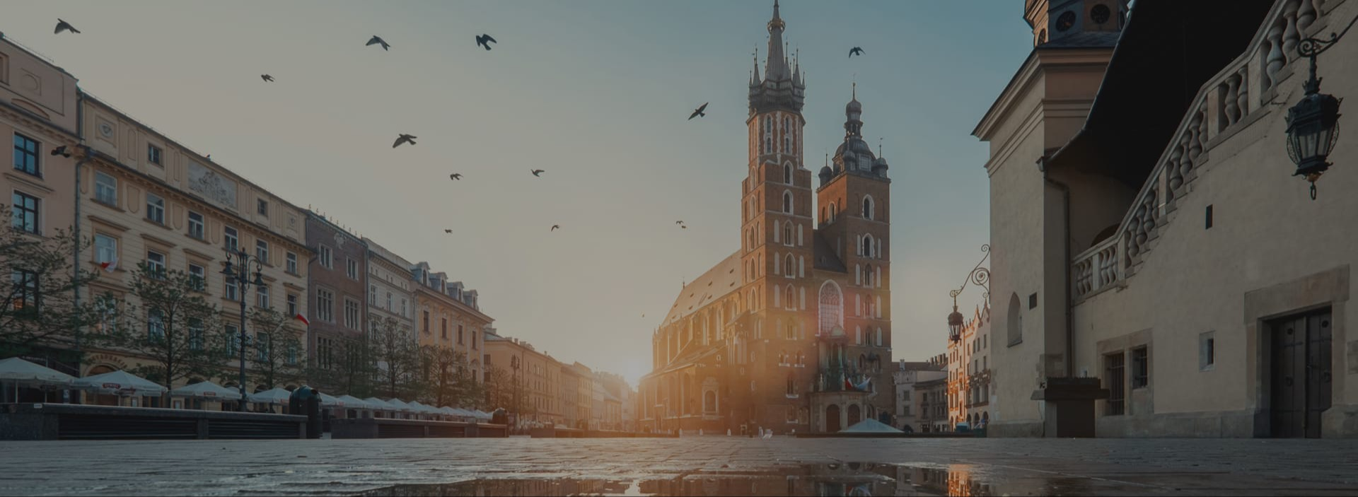 Software development in Poland: major IT hubs, developers, and more