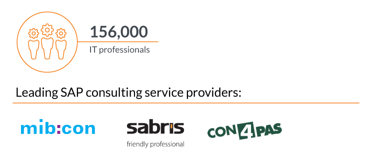 SAP_Consulting-infographic_Czech Republic (1)