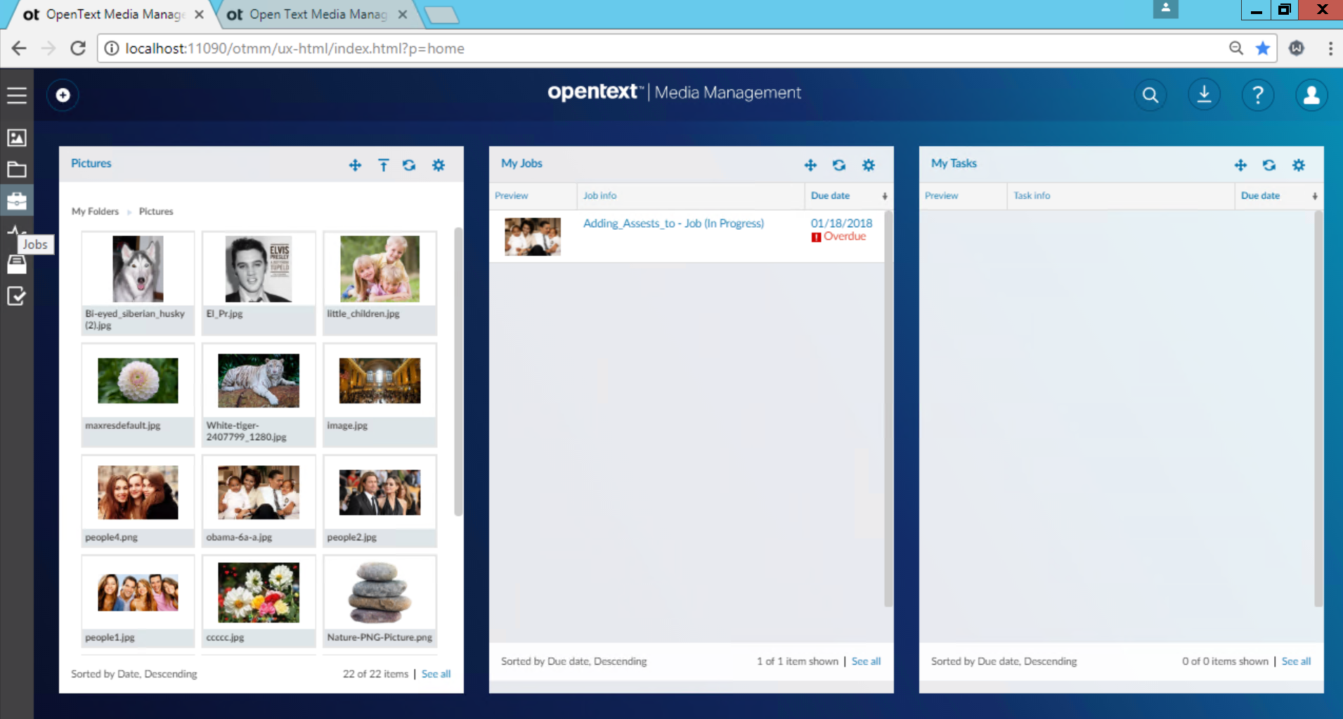 OpenText Media Management: home page