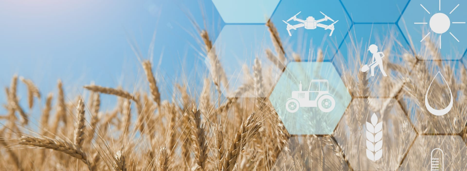 Big data in agriculture: Trends, challenges, solutions